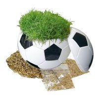 Ein rasender Fußball mit Werbebedruckung Bild 1