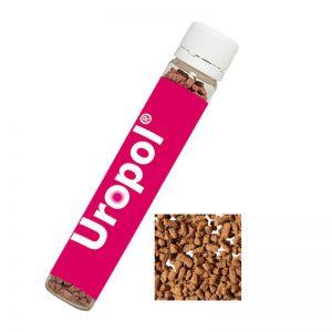 10 g Instant Eistee Blutorange im Kunststoff Reagenzglas mit Werbe-Etikett