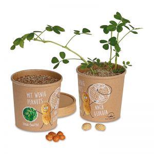 Erdnuss-Saatset mit Banderole und Werbedruck