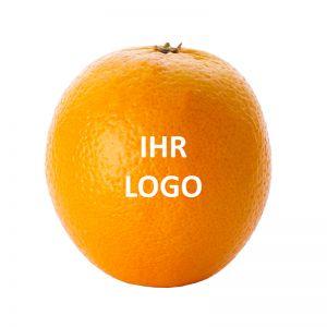 LogoOrange mit Logodruck
