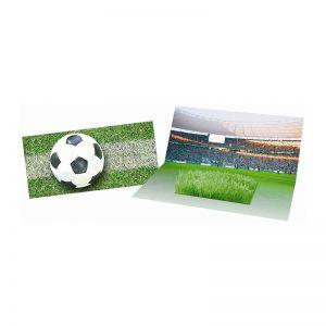 Mini Fußball-Arena Karte mit Zimmerrasen und Werbedruck